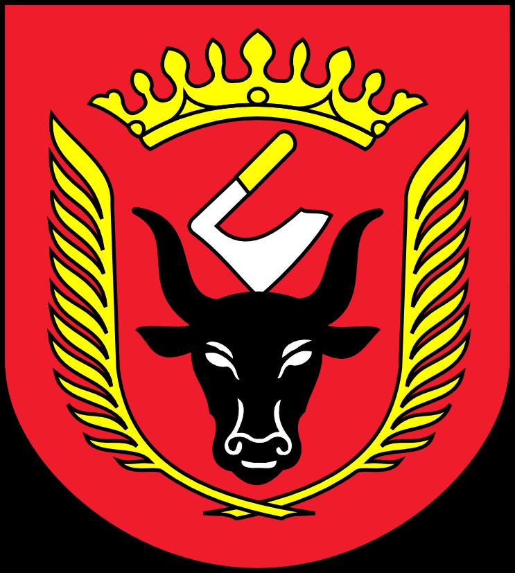 gmina-wiskitki